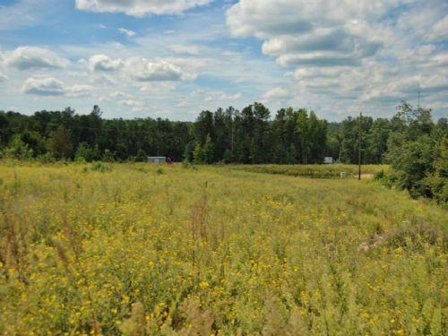 60.93 Acre Recreational Tract : Pomaria : Newberry County : South Carolina