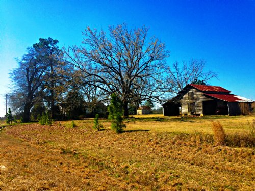 Hidden Waters Farm : Statesboro : Bulloch County : Georgia