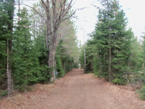130535 - 79 Acres In Sugar Camp : Sugar Camp : Oneida County : Wisconsin