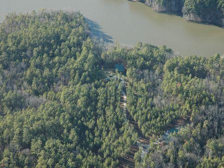 South Carolina Lakefront Hunt Club : Chester : Chester County : South Carolina