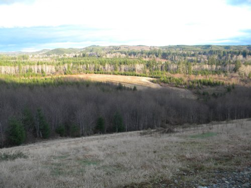 Priced To Sell : Montesano : Grays Harbor County : Washington