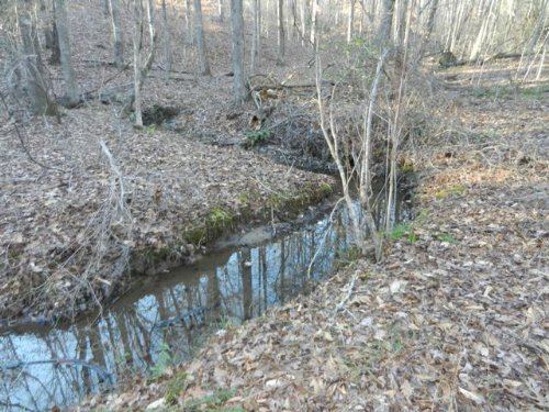 45+/- Acres Land And Home On County : Wadley : Randolph County : Alabama