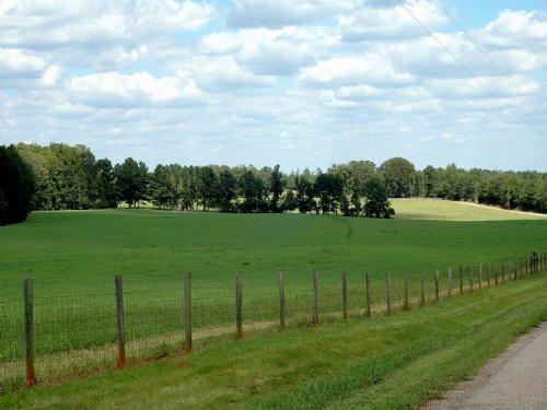 Rare Opportunity - Pine Grove Farm : Newborn : Newton County : Georgia