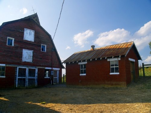 Excellent Cattle Farm : Prospect : Prince Edward County : Virginia