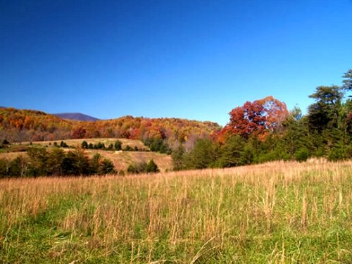 Build Your Ideal Farm : Roseland : Nelson County : Virginia