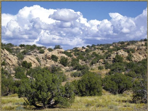 Woodland Valley Ranch Foreclosures : Saint Johns : Apache County : Arizona