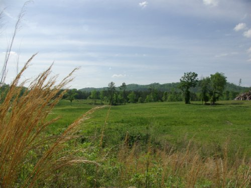 56 Acres - Creek - Fenced - Pasture : Ashville : Saint Clair County : Alabama