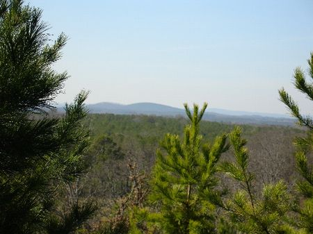34.72  Acres : Childersburg : Talladega County : Alabama