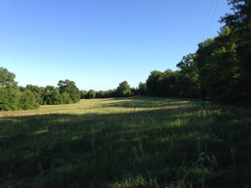 72 +/- Ac In Troy : Troy : Pike County : Alabama