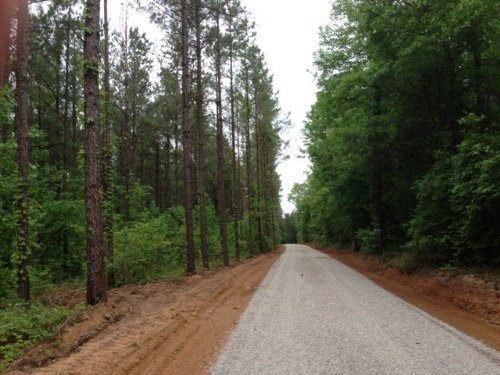 15 +/- Ac On Smart Rd In Troy : Troy : Pike County : Alabama