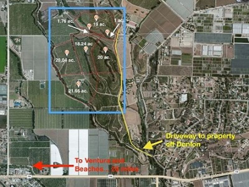 Development And Orchard Ranch For Sale Somis Ventura County