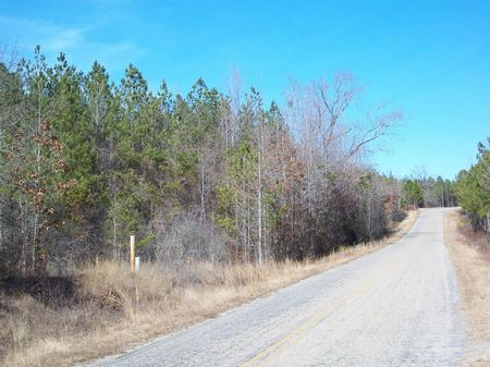 21 (+-) Ac, Paved Rd, Timber, Hunt : Butler : Taylor County : Georgia