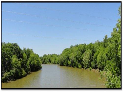 Ware Shoals River Tract : Ware Shoals : Laurens County : South Carolina