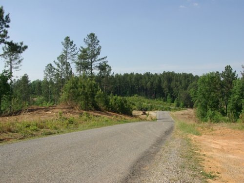 Close To Birmingham - Tract 27of 28 : Odenville : Saint Clair County : Alabama