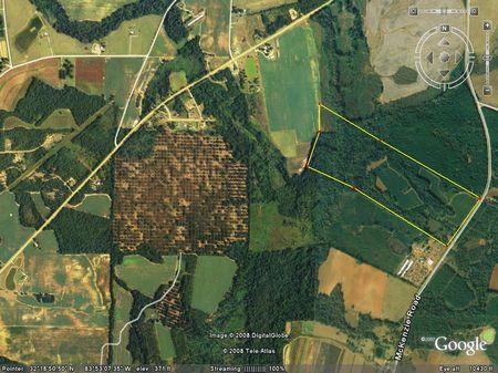 111 (+-) Acres, Hogcrawl Creek : Reynolds : Macon County : Georgia