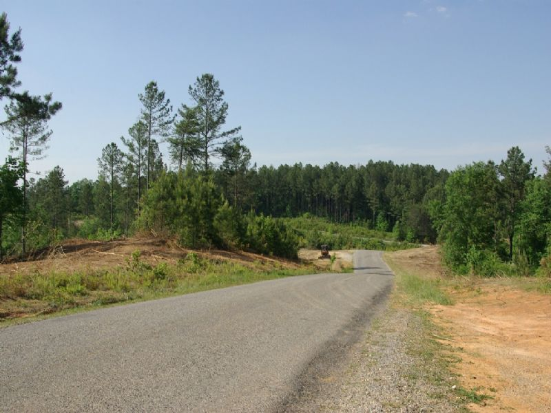 Near Birmingham - Tract 16 Of 28 : Odenville : Jefferson County : Alabama