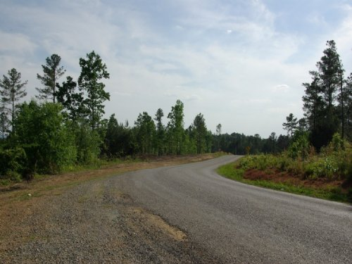 Near Birmingham - Tract 15 Of 28 : Odenville : Saint Clair County : Alabama