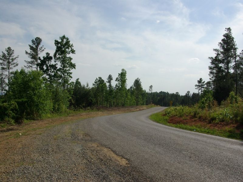 Near Birmingham - Tract 13 Of 28 : Odenville : Saint Clair County : Alabama
