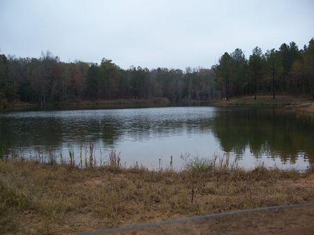 200 (+-) Acre Retreat, Cabin, Lake : Randolph : Randolph County : Georgia
