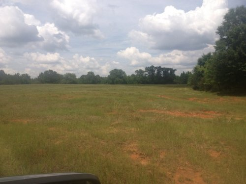 157 +/- Acres In Brundidge : Brundidge : Pike County : Alabama