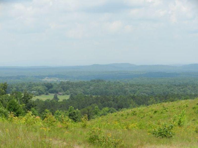 77+/- Acres Near Cragford : Cragford : Clay County : Alabama