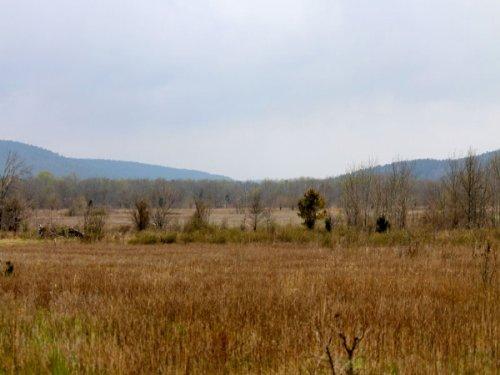 10.02 Acres, Daisy Meadows, Creek : Mcalester : Pittsburg County : Oklahoma