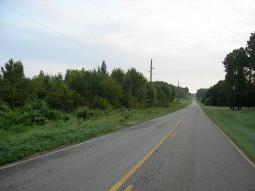 Price Reduced On Foothills Land : Oxford : Talladega County : Alabama