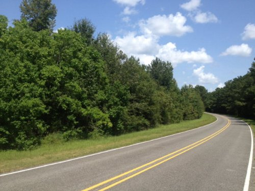 40 Acres In Lake Lincoln Area : Wesson : Lincoln County : Mississippi