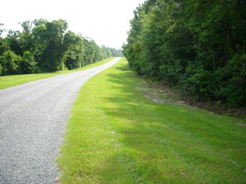 Longleaf Branch : Garfield : Emanuel County : Georgia