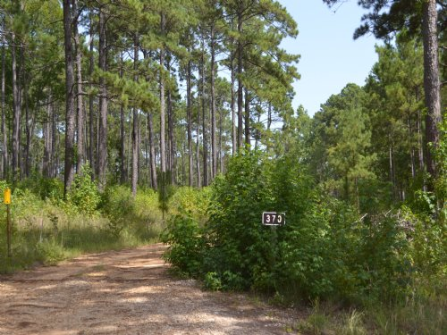 960+/- Acres In Natchitoches Parish : Natchitoches : Louisiana