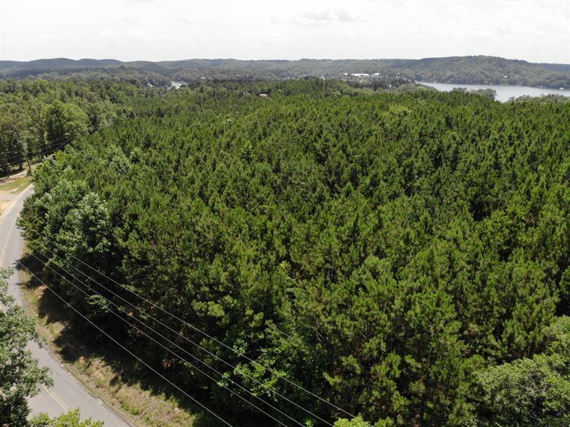 25-008D Catalina : Cullman : Cullman County : Alabama