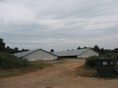 Poultry Farm : Carnesville : Franklin County : Georgia