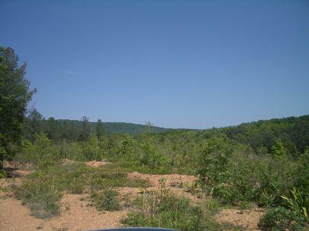 152 Acres On Liberty Church Road : Ranger : Gordon County : Georgia