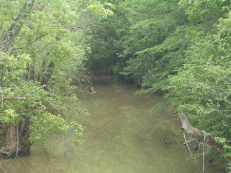 101 Acres Of Bottom Land : Calhoun : Gordon County : Georgia