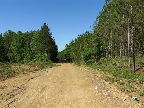 863 Acres With Excellent Topography : Resaca : Gordon County : Georgia