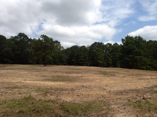 40 +/- Acres With 5 +/- Pond : Troy : Pike County : Alabama