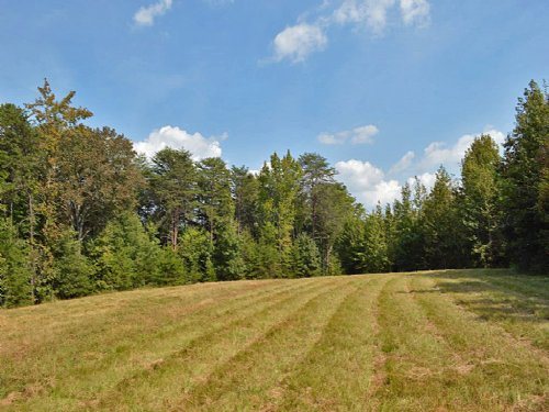 82.8 Acre Recreational Tract Near G : Union : South Carolina