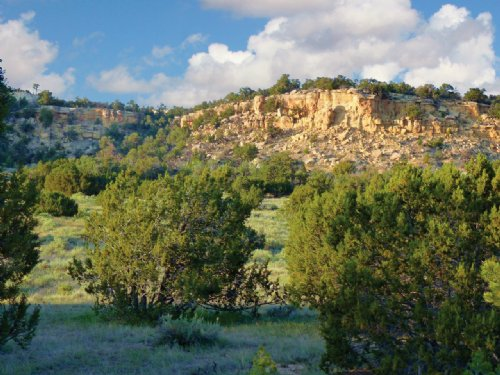 Arizona Wilderness Ranch $237/Mo : Saint Johns : Apache County : Arizona