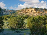 Arizona Wilderness Ranch $237/Mo : Sanders : Apache County : Arizona