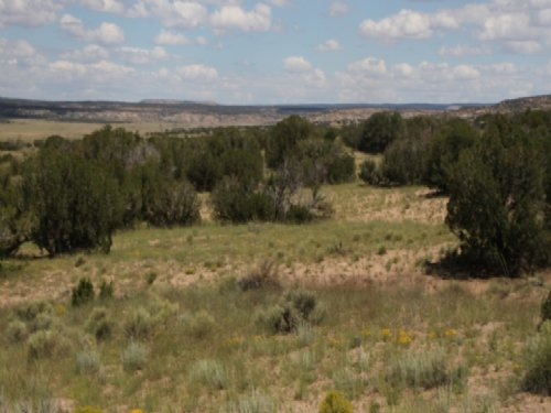 Az 37 Acre Self Sufficiency Ranch : Saint Johns : Apache County : Arizona