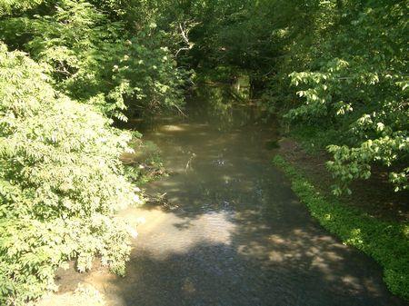 95 Ac Great Creek Frontage 9606-1 : Rydal : Gordon County : Georgia