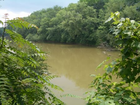 94 Acres On Oostanaula River : Calhoun : Gordon County : Georgia