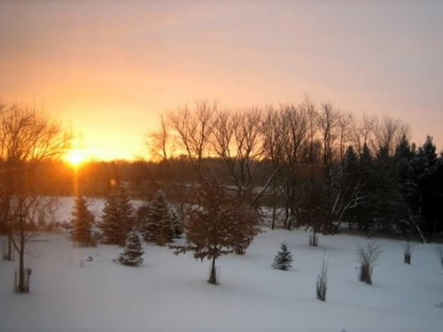 156 Acre Country Estate : Fox Lake : Dodge County : Wisconsin