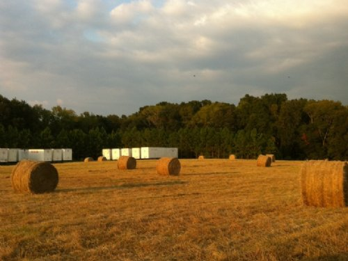 Land For Vehicle Storage Or Agricul : Bell : Gilchrist County : Florida