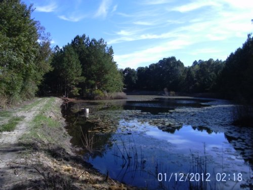 10 Acres : Rembert : Sumter County : South Carolina