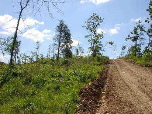 27.68 Acres Antler Ridge. Terms : Belleville : Shannon County : Missouri