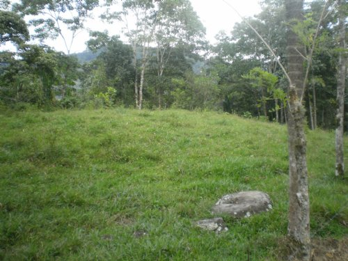 57 Ac. Riverfront Cattle Farm : Tucurrique Cartago : Costa Rica