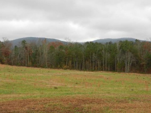 65+/- Acre & Cabin W/mtn. View : Centre : Cherokee County : Alabama