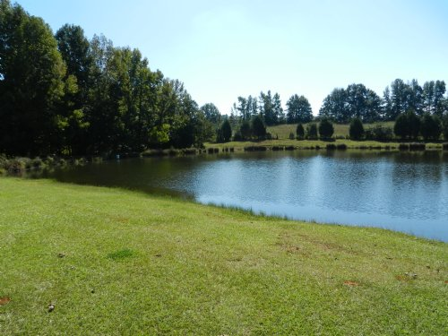 40+/- Acre Farm W/lake : Roanoke : Randolph County : Alabama