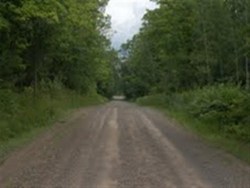 Tbd N M28/foucault Rd  Mls#1070738 : Covington : Baraga County : Michigan